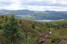 View Accross To Loch Tay From ...
