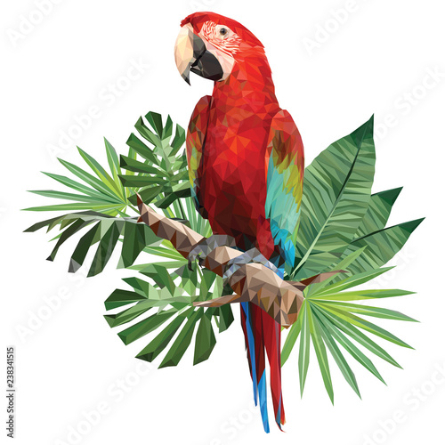 Fotografia Illustration polygonal drawing of green wing macaw.