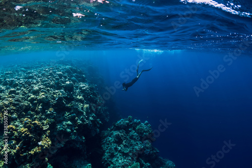 Poster Bleu nuit Free diver man dive in ocean, underwater view with rocks and corals