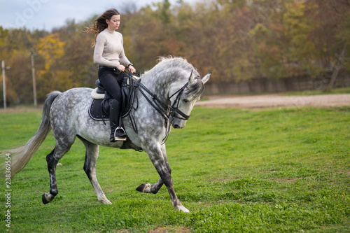 Fototapeta woman with a horse for a walk obraz