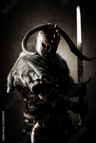 Portrait of a Viking Wallpaper Mural