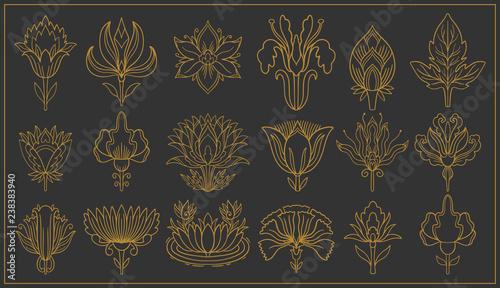 Photo  Art nouveau and art deco floral ornaments, modern flower vintage elements