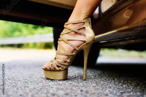 Fotografia  Womans legs in high heels