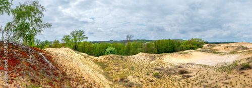Photo The cloudy dramatic landscape with fresh green forest and sandy desert
