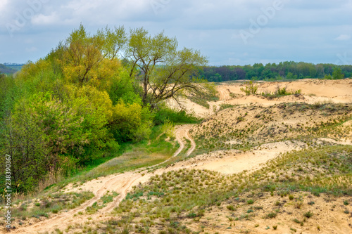 The cloudy landscape with the green forest, sandy desert and rural ground road between them Canvas Print