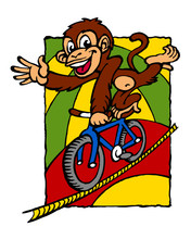Monkey Acrobat Rides A Bicycle On A Rope In A Circus