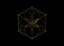 Gold Symbol Of Alchemy Esoteri...