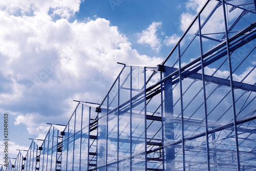Fototapeta greenhouse in Hungary and summer sky