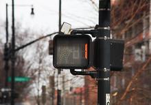 Do Not Walk Pedestrian Light