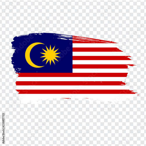 Fotografía  Flag  Malaysia from brush strokes