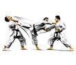 karate action 9