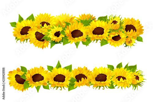 Obraz na plátně vector sunflower seeds frame