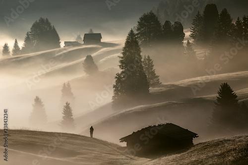 Fotografie, Obraz  Man in the fog, Alpe di Siusi, Dolomites, Italy
