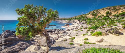 Kedrodasos beach near Elafonissi beach on Crete island with azure clear water, Greece, Europe