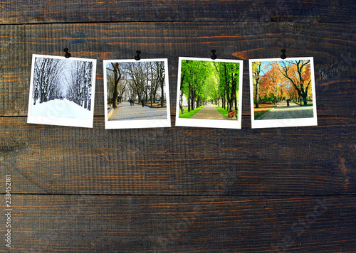 Photos of four seasons attached to dark wooden wall Fototapet