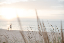 Background Of Walking Adult And Child Silhouettes On A Sandy Beach In Pastel Shades.