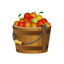 Wooden Bucket With Apples