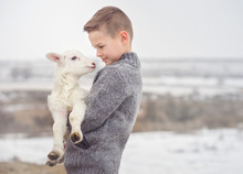 Boy Carrying Lamb On Farm Duri...