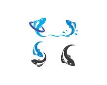 Fish Logo Template. Creative Vector Symbol Of Fishing Club