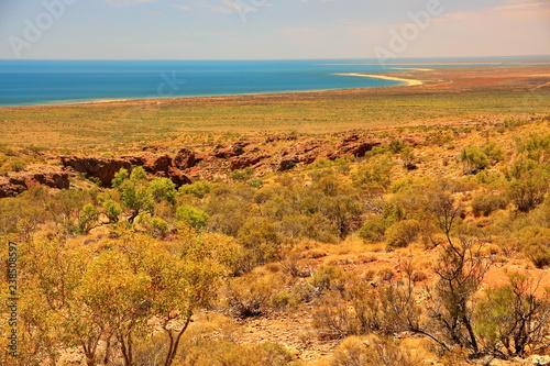 Poster Hyène Cape Range in Western Australia