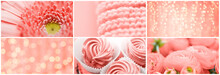 Trendy Design Concept - Collage Of Different Objects And Textures In Color Of The Year 2019 Living Coral