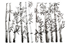Hand Drawn Bamboo Leaves And B...
