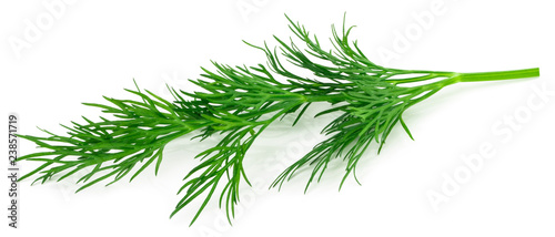 fresh green dill isolated on white background. macro Fototapet