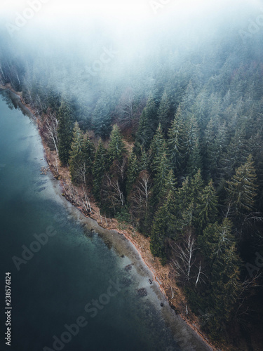 Fotografia  Scenic evergeen foggy forest and lake in autumn,captured with a drone from above