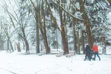 Young Family Walking By Winter Park With Baby Carriage