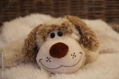 Fotografie, Obraz  Un chien en peluche