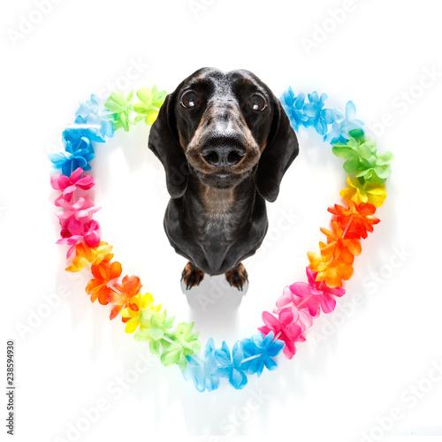 Staande foto Crazy dog happy valentines dog