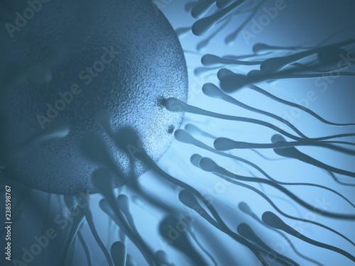 Newcastle university stem cell sperm — photo 12