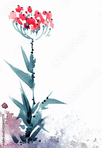 Fotografie, Obraz Watercolor flowers illustration