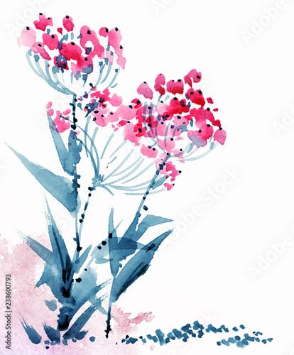 Obraz na plátně Watercolor flowers illustration