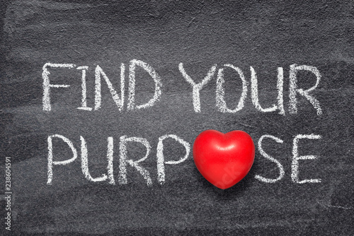 find your purpose heart Canvas Print