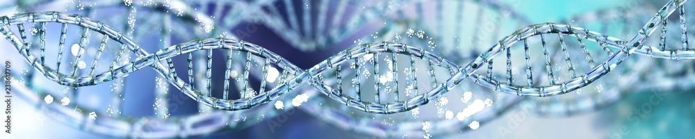 Fototapeta DNA, RNA helix, banner,