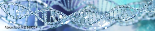 Foto auf AluDibond Spirale DNA, RNA helix, banner,