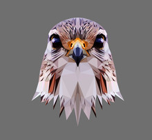 Falcon Head On Grey Background, Low Poly Triangular And Wireframe Vector Illustration EPS 10 Isolated. Polygonal Style Trendy Modern Logo Design. Suitable For Printing On A T-shirt.
