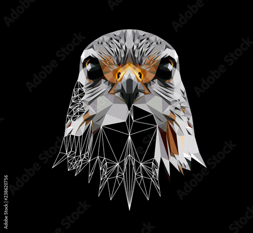 Fotomural  Falcon on black background, low poly triangular and wireframe vector illustration EPS 10 isolated