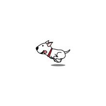 Cute Bull Terrier Dog Running,...