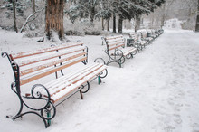 Benches In The Park Covered With Snow