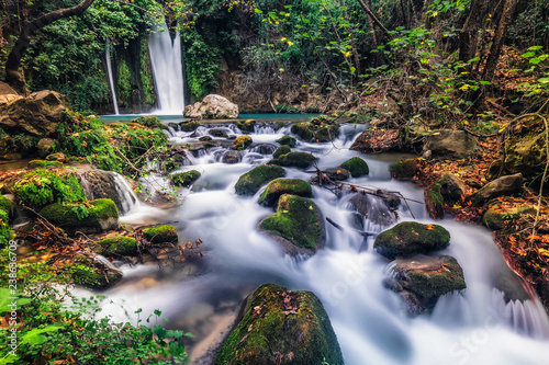 Aluminium Prints Forest river Waterfall Banias landscape
