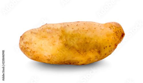 Tuinposter Kruiderij potato on white background
