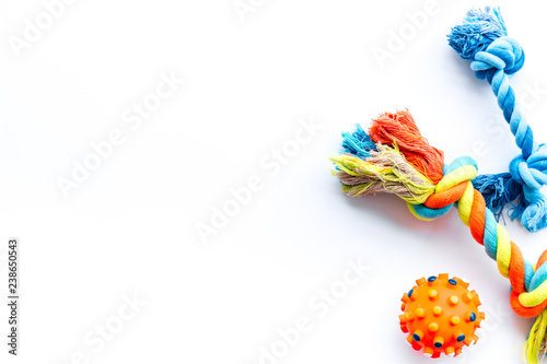 Pet accessories for care and training. Toys on white background top view mock-up