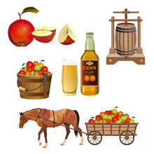 Cider Set Vector