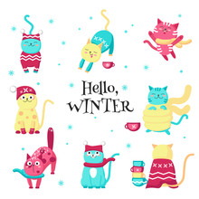 Cute Funny Winter Cats Vector Isolated Illustration