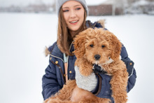 Dog With Owner In Snow