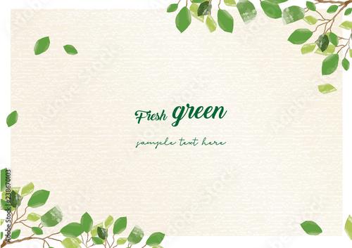 Fotomural  新緑のシンプルフレーム