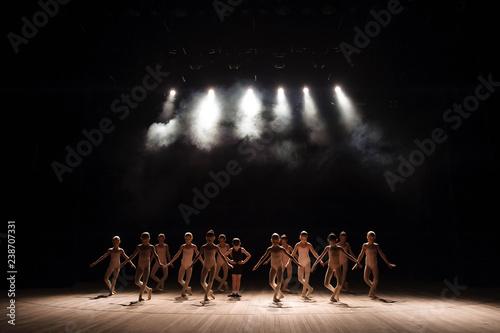 Fototapeta Young ballerinas rehearsing in the ballet class