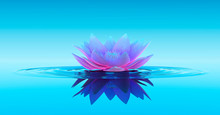 Water Lily Abstract Fantasy Ba...